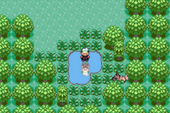 Emerald Renewal Screenshot