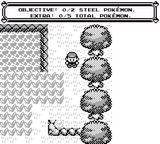 Pocket Forever Monsters - Randomized Pokemon World Screenshot