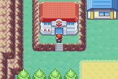 Pokemon Black 'n White Screenshot