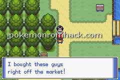Pokemon Bonds GBA ROM Hacks