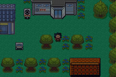 Pokemon DarkCopper GBA ROM Hacks