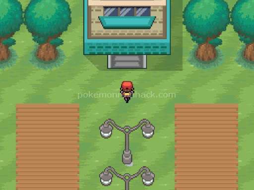 Pokemon Dark Void Screenshot