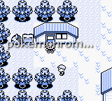 Pokemon EDM Version GBC ROM Hacks