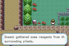 Pokemon Elemental Rift Screenshot