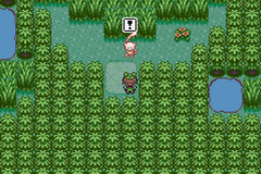Pokemon Emerald Squared GBA ROM Hacks