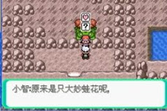 Pokemon Evil World GBA ROM Hacks