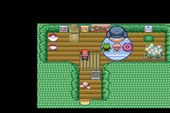 Pokemon Forge Special Screenshot