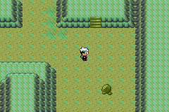 Pokemon Green Nebula Screenshot