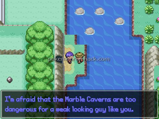 Pokemon Lost Kingdom Screenshot
