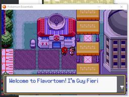 Pokemon Meat Version RMXP Hacks