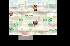 Pokemon Meta Fire Red X and Y Screenshot
