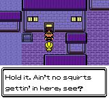 Pokemon Mint Fantasy RMXP Hacks