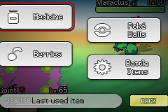 Pokemon Nobelium Screenshot
