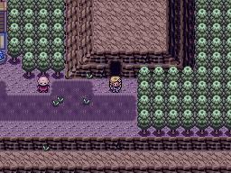 Pokemon Primal Screenshot