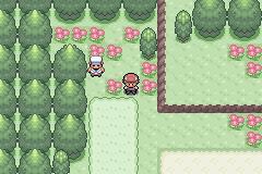 Pokemon Rainy Days Screenshot
