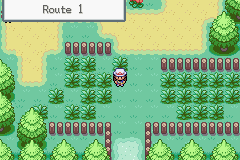 Pokemon RedChal GBA ROM Hacks