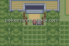 Pokemon Reverse Version GBA ROM Hacks