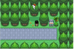 Pokemon Sun Sky GBA ROM Hacks