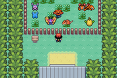Pokemon Sunset Orange Screenshot