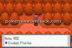 Pokemon Terra Firma GBA ROM Hacks