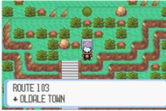 Pokemon Terrifying Destiny Screenshot
