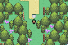 Pokemon Twisted Mind GBA ROM Hacks