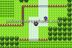 Pokemon Voltage Version GBA ROM Hacks