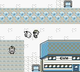 Pokemon Wood Screenshot